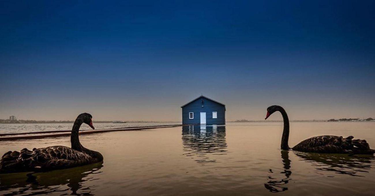 Casinha azul famosa no Instagram fez Austrália gastar R$ 1 mi com banheiros
