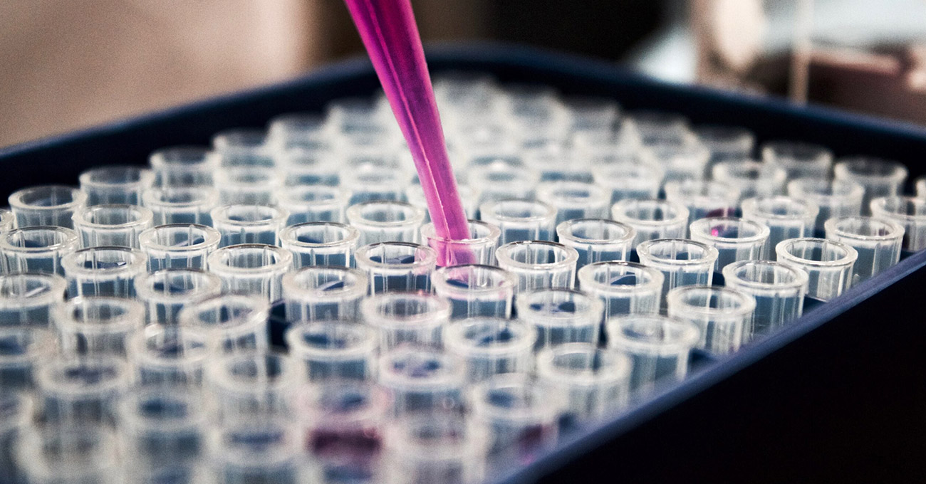Cientistas descobriram enzima que rejuvenesce e prolonga vida de ratos