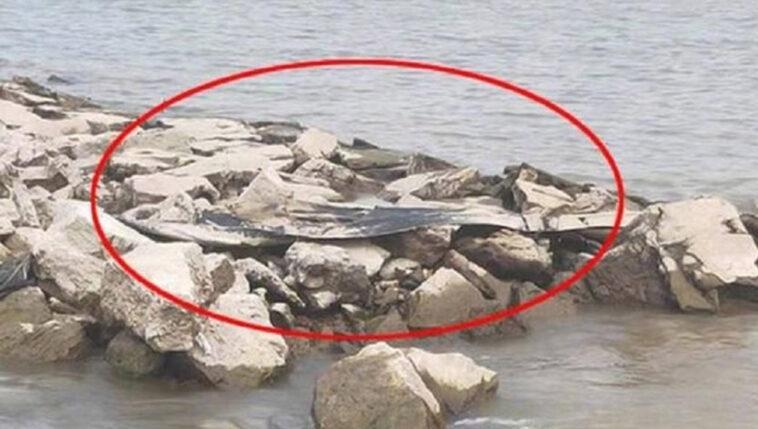 Monstro aquático foi visto em rio da China