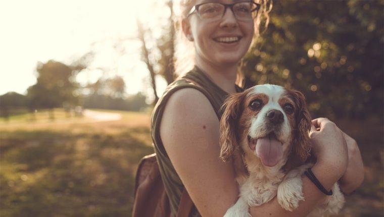 Risco de morte prematura cai em até 24% em pessoas que têm cães