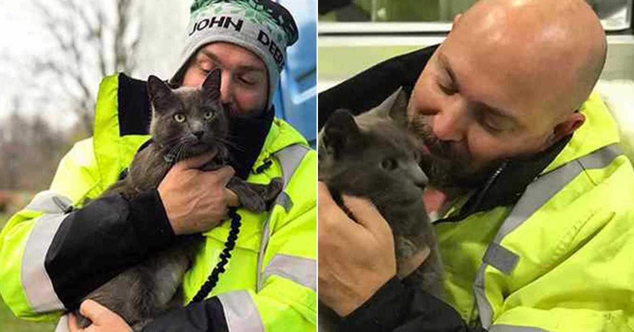 Caminhoneiro chora ao reencontrar gato companheiro de estrada perdido há meses