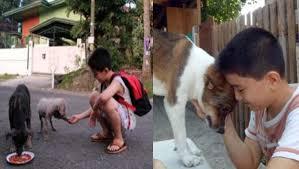 Menino que usava economias para alimentar cães de rua funda abrigo