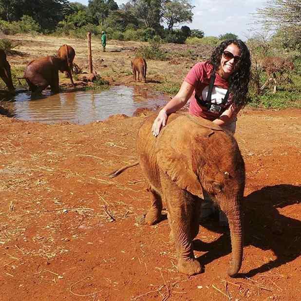 Elefantinho órfão e avestruz se tornam inseparáveis e fotos são lindas