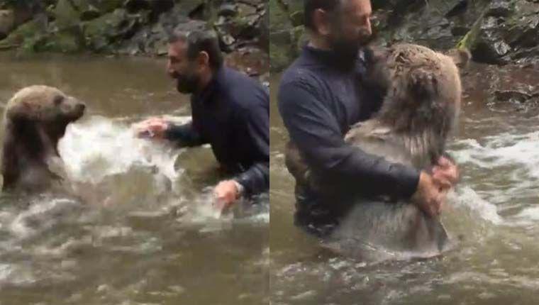 Urso selvagem abraça homem que se arriscou em rio para brincar com ele (vídeo)