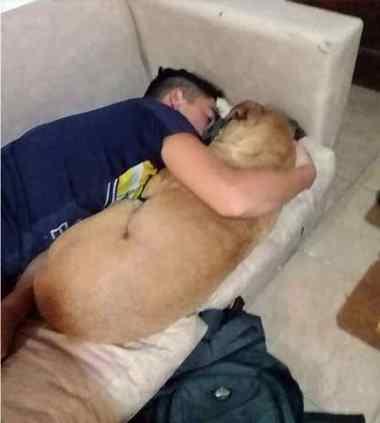 Cadela sofre ataque cardíaco e morre abraçada ao dono durante queima de fogos de artifício