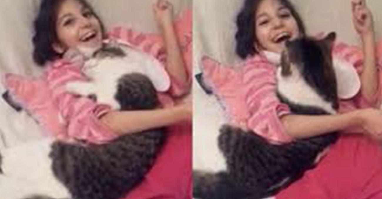Gato rejeitado por ser 'grande demais' se torna melhor amigo de menina deficiente