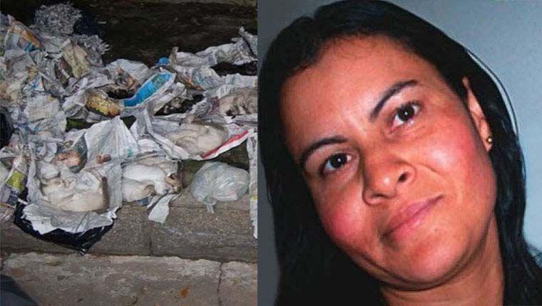 Mulher matou 33 gatos e quatro cães se apresentando como protetora de animais