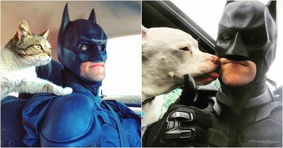 """""""Batman"""" salva animais da eutanásia e os encaminha para adoção"""