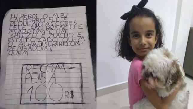Menina de oito anos oferece dinheiro do cofrinho para quem ajudar a encontrar cãozinho desaparecido