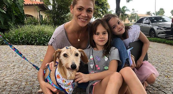 Emocionante: Cão é adotado após 12 anos vivendo em abrigo – ele nunca era escolhido