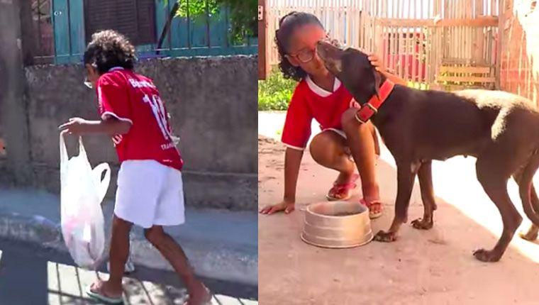 Menina de 7 anos junta latinhas para comprar comida para cães de rua e emociona ídolo
