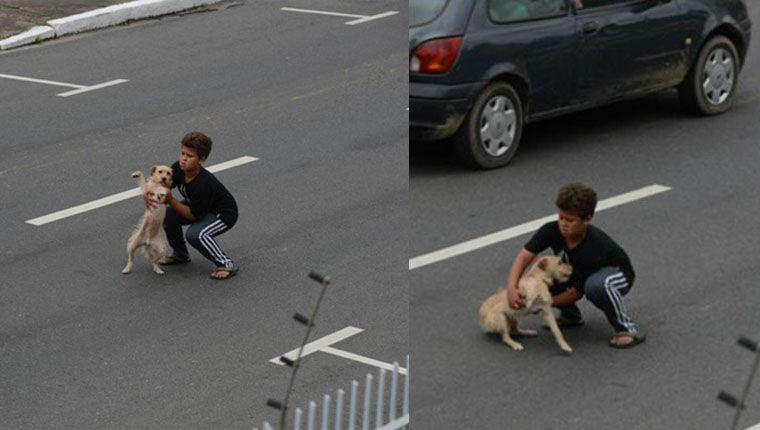 Garotinho para trânsito de rodovia para salvar cão atropelado