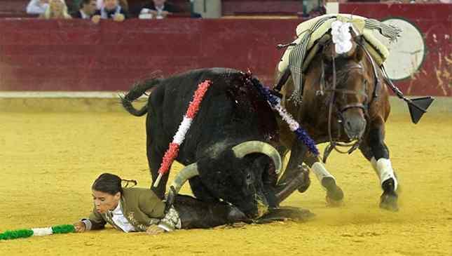 Toureira que exibiu orelhas de touro como troféus foi chifrada e ferida em tourada