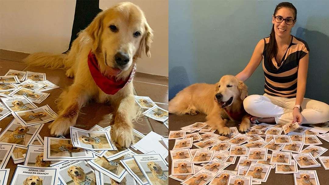 Cão terapeuta diagnosticado com câncer recebe cartinhas de crianças o agradecendo