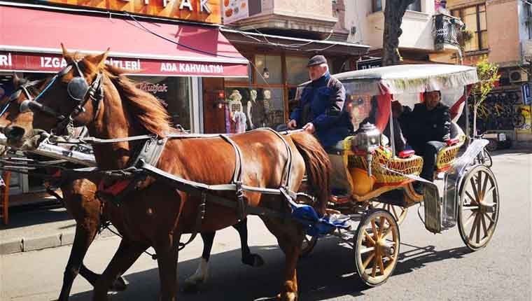 Istambul proíbe que cavalos puxem carruagens
