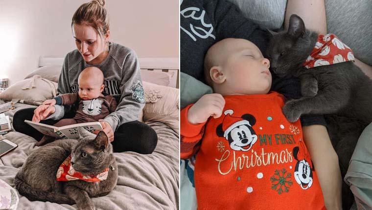 """Gata que não gostava de pessoas se apaixona por bebê – """"obcecada por ele"""""""