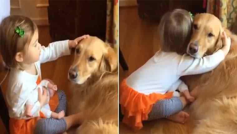 Menina e golden retriever dão exemplo de amizade em vídeo lindo