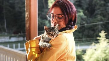 gatos e humanos