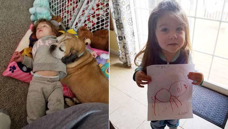 Menina perde cãozinho e escreve carta para ele no céu – resposta é emocionante