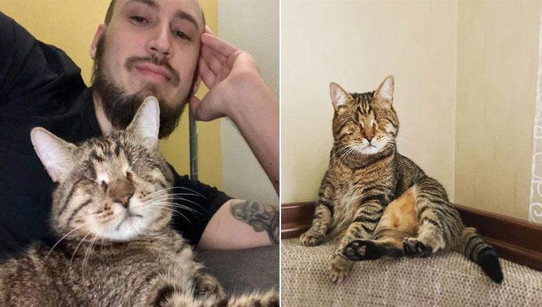 Homem adotou um gatinho cego e mostrou como ele mudou sua vida
