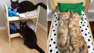camas de boneca para gatinhos 1