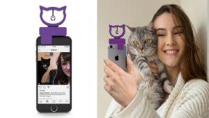 Selfies com gatinhos – dispositivo ajuda a tirar fotos perfeitas com seu bichano