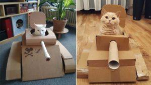 Tanques de guerra de papelão para gatinhos fazem sucesso na quarentena