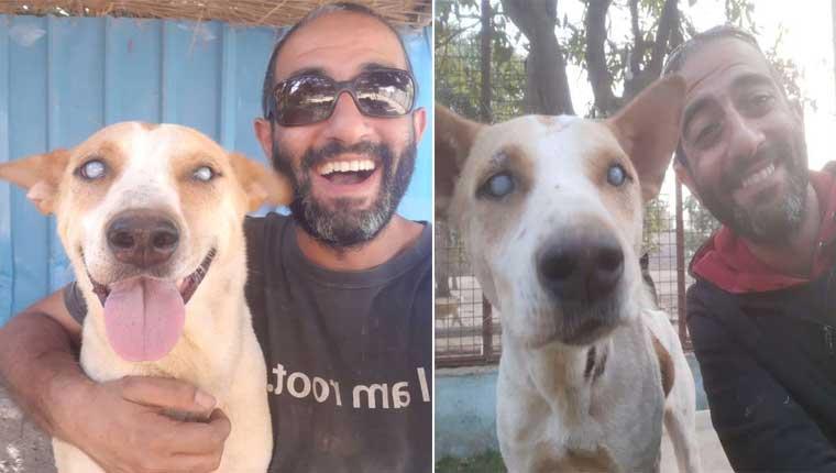 Cachorro cego não contém a felicidade ao ouvir a voz do melhor amigo humano