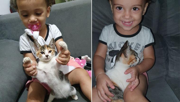 Gatinha carinhosa resgatada em garagem faz amizade com garotinha
