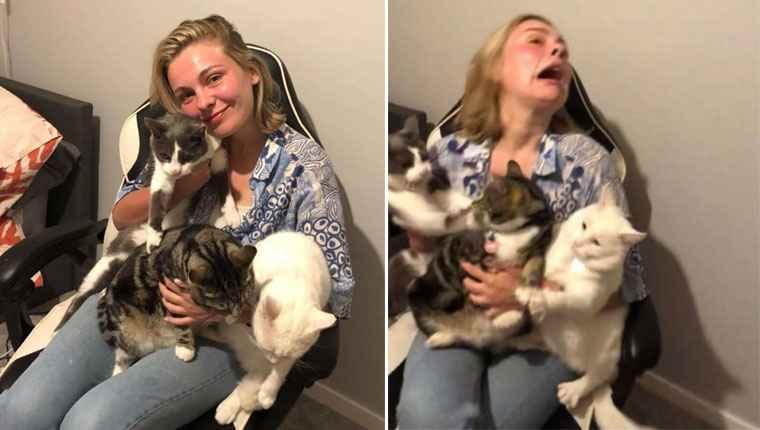 Mulher tenta tirar uma foto bonita com os gatinhos e tudo dá errado