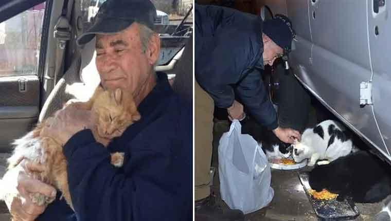 Homem de 76 anos recolhe sucata para alimentar gatinhos de rua por 22 anos
