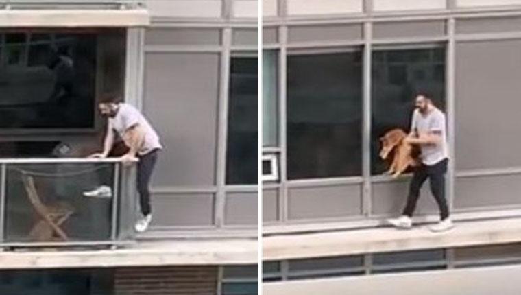 Homem arrisca a vida para salvar seu gatinho a 18 metros de altura