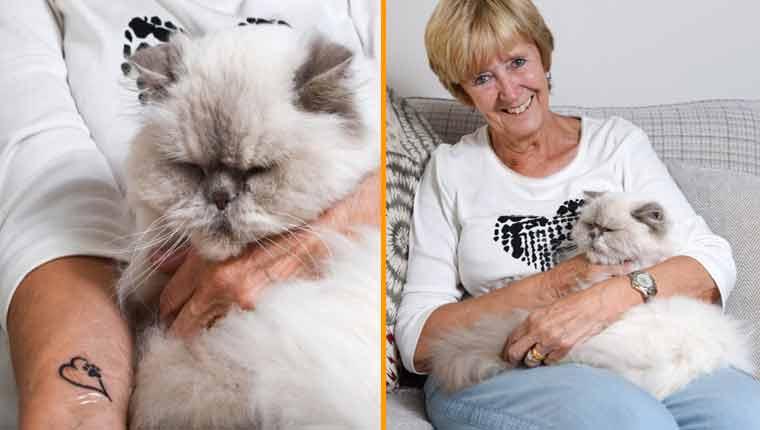 Idosa de 71 anos faz primeira tatuagem em homenagem a gatinho doente