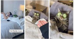 Casal viralizou noTikTokcom vídeo hilário de gato e marido no spa