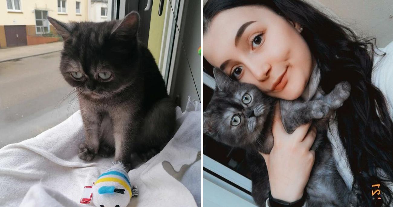 Mulher se apaixona por gata considerada feia ignorada por anos no abrigo