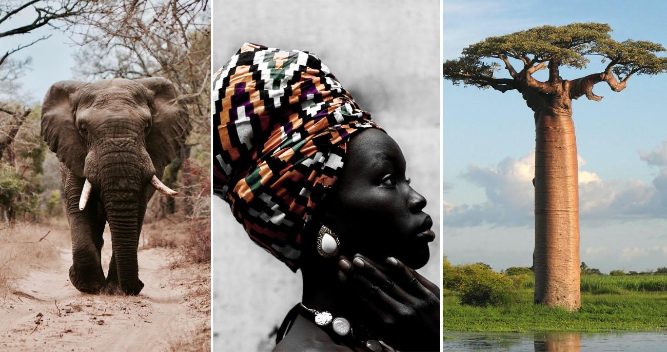 Continente Africano: curiosidades, características e tudo sobre a África