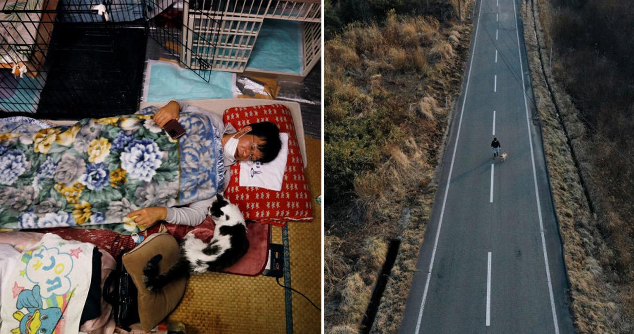Ele vive na zona nuclear de Fukushima para cuidar de gatos abandonados