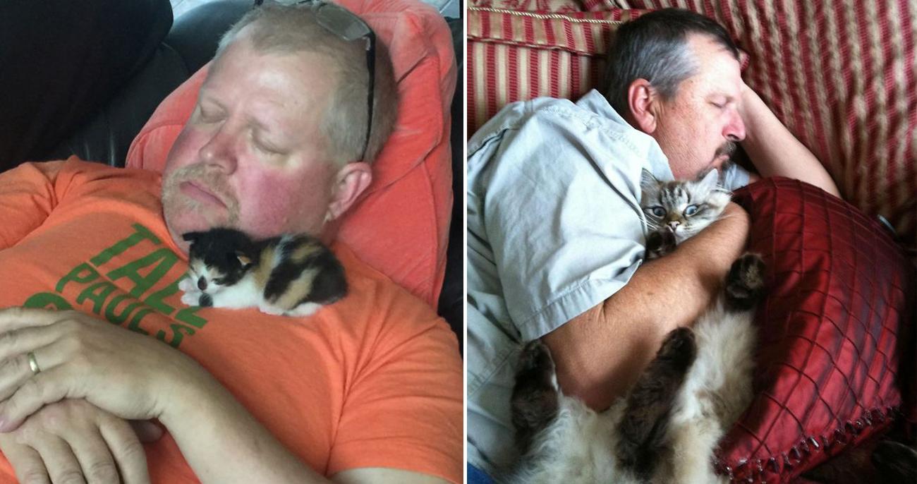 Pessoas que não queriam saber de gatos em casa se rendem a eles