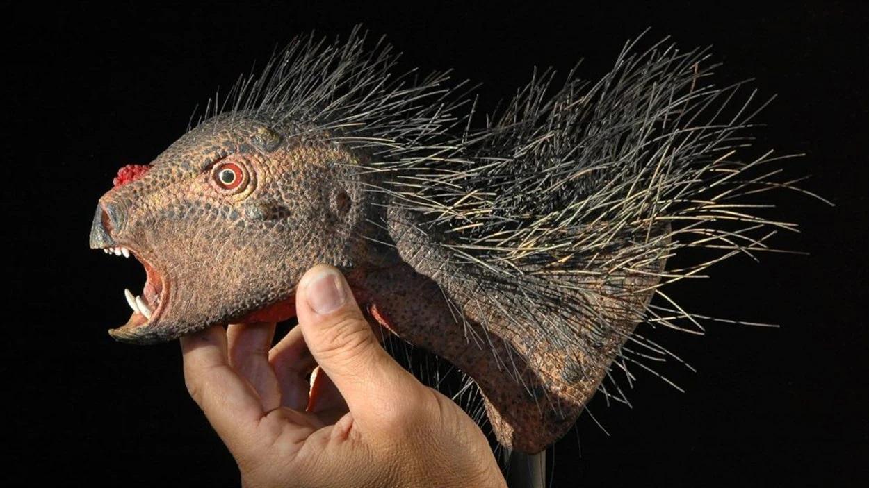 curiosidades sobre dinossauros pegomastax
