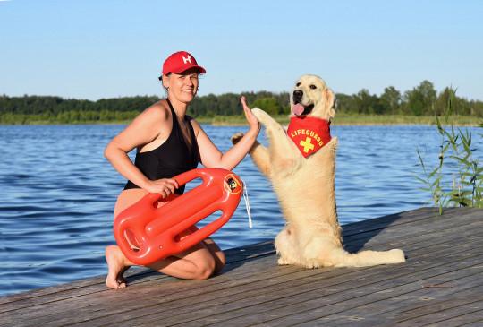Cachorro recebeu treinamento para salvar vidas
