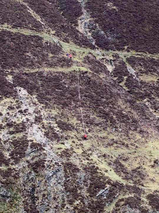Cachorro sobrevive a queda de mais de 90 metros
