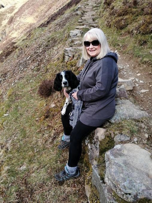 Cachorro sobrevive a queda em cachoeira