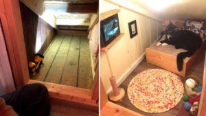 Homem transformou espaço na parede em quarto incrível para o gato