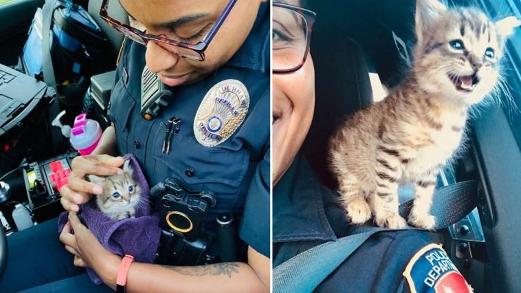 Policiais resgatam uma gatinha e a promovem a agente mais fofa