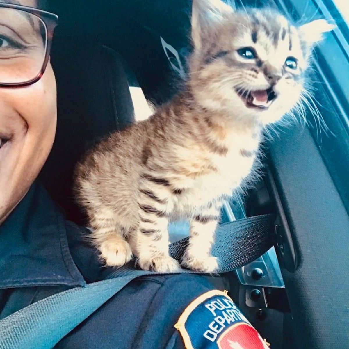 Policiais resgatam uma gatinha e a promovem a agente