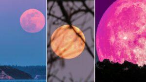 Superluarosa: Curiosidades sobre o fenômeno da lua mais linda do ano