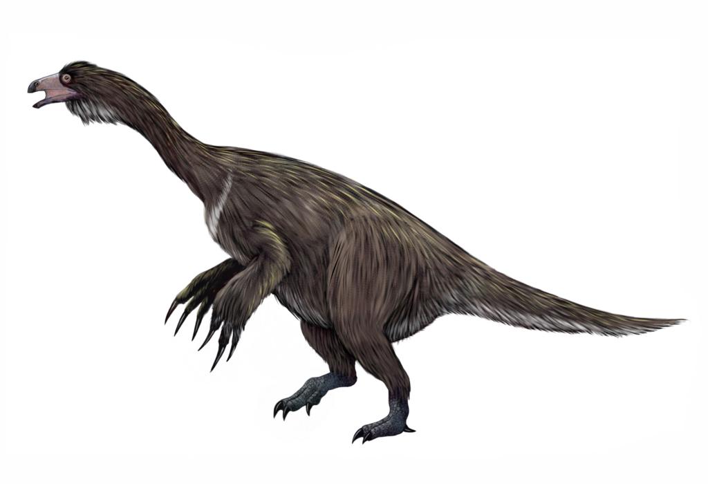 curiosidades sobre dinossauros Suzhousaurus