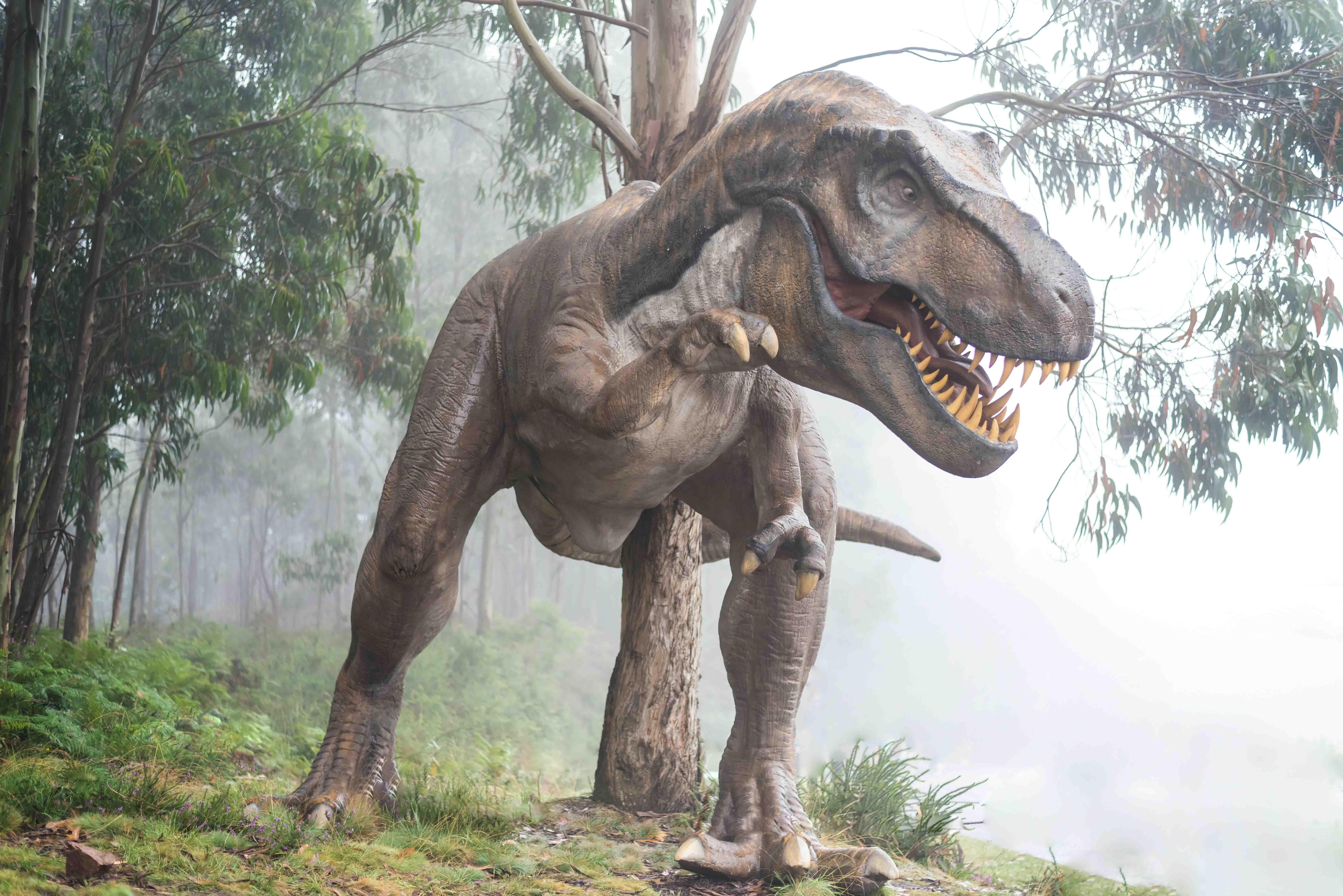 curiosidades sobre dinossauros fatos