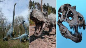 Curiosidades sobre dinossauros: 10 fatos incríveis e divertidos
