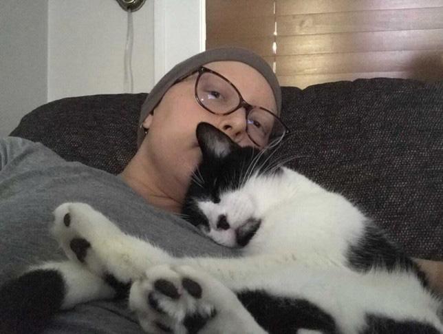 gato salva mulher